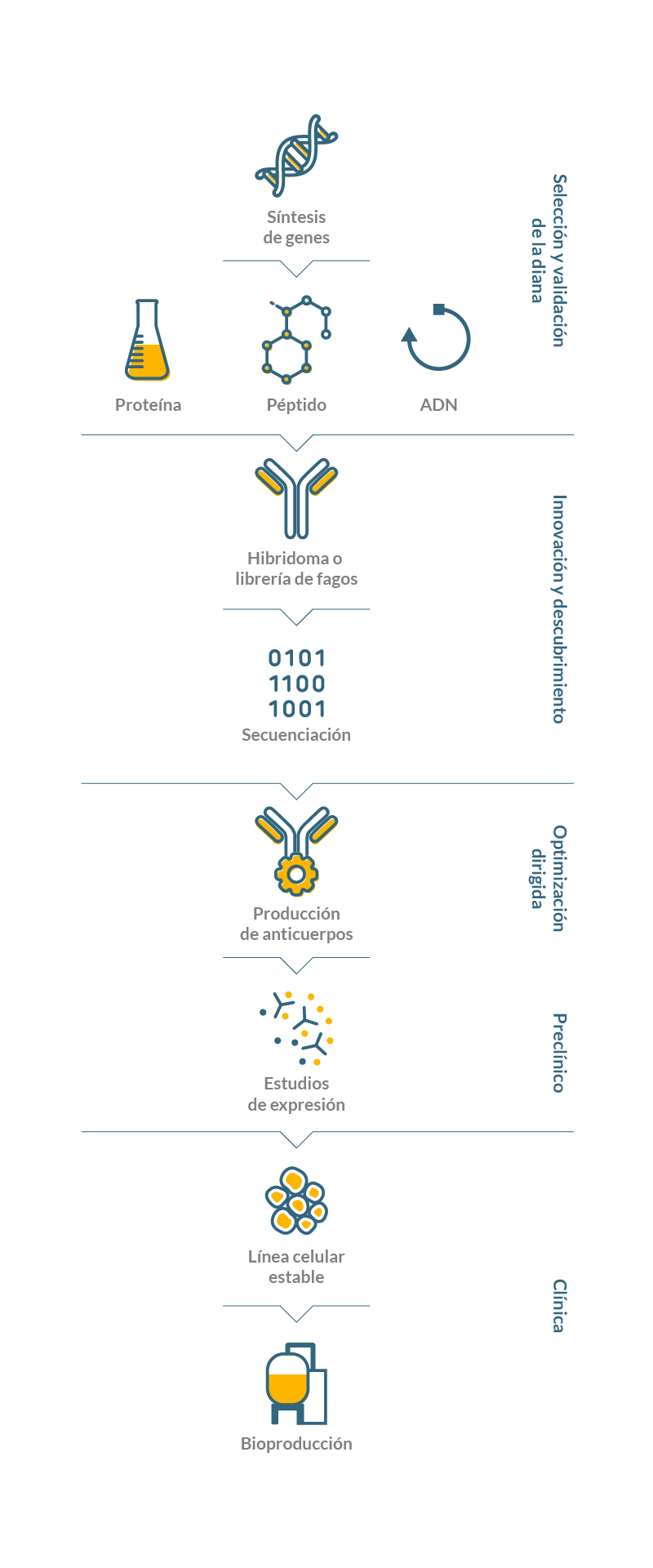Soluciones integradas en biotecnología